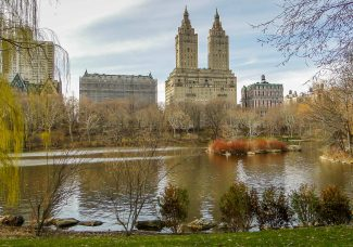 Vendors to remain capped in New York City parks