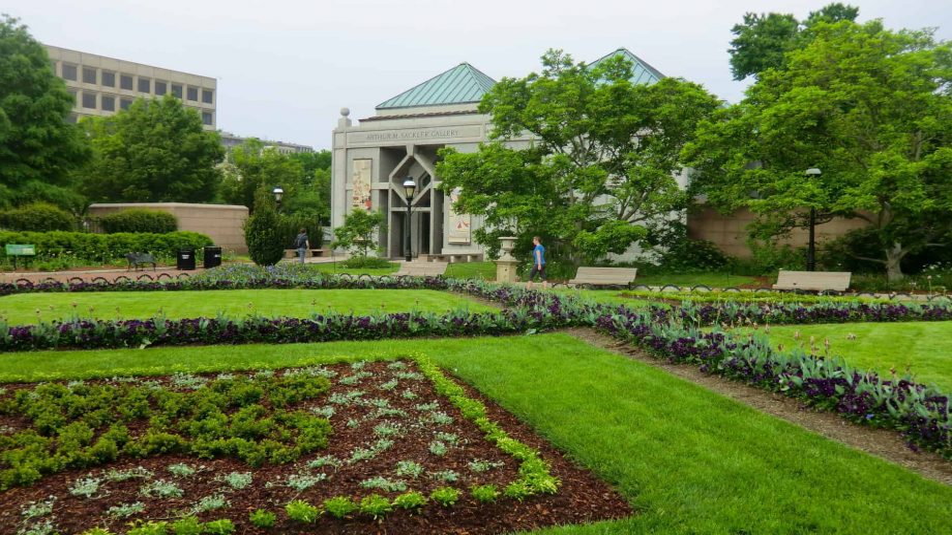 Oregon Senator calls for removal of Sackler name at the Smithsonian