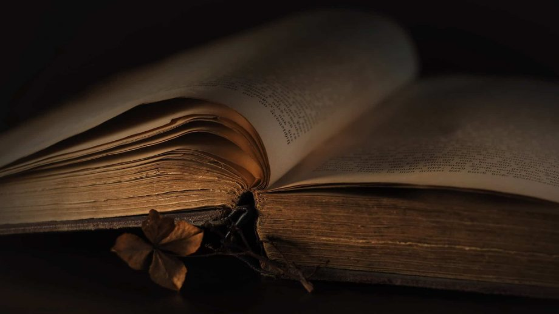 600 stolen books returned to University and Regional Library of Bonn