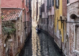 Art World Roundup: silver linings in Venice and COVID-19 effects