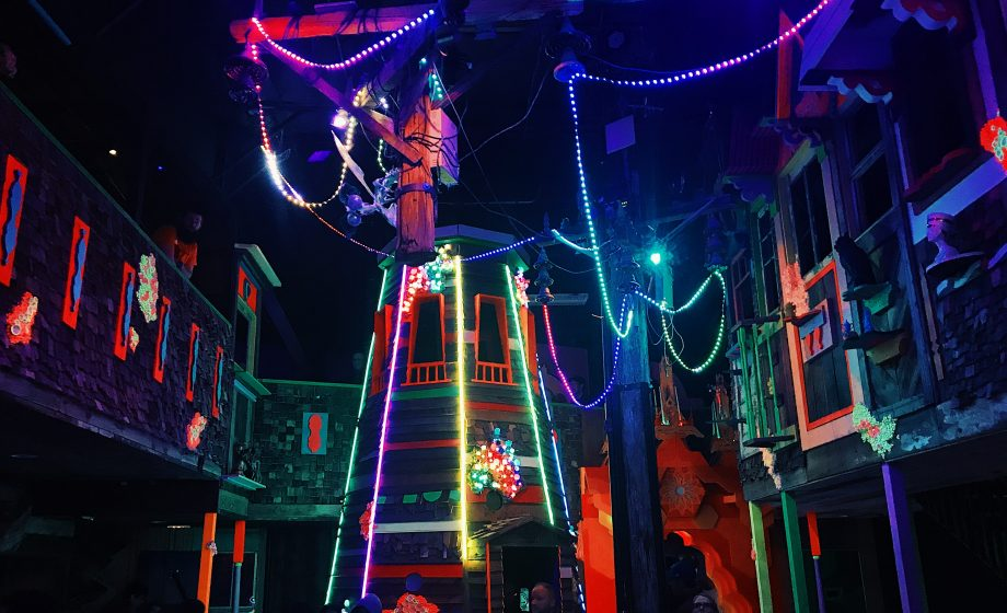 Meow Wolf: A Novel Model for Artists on the Fringe