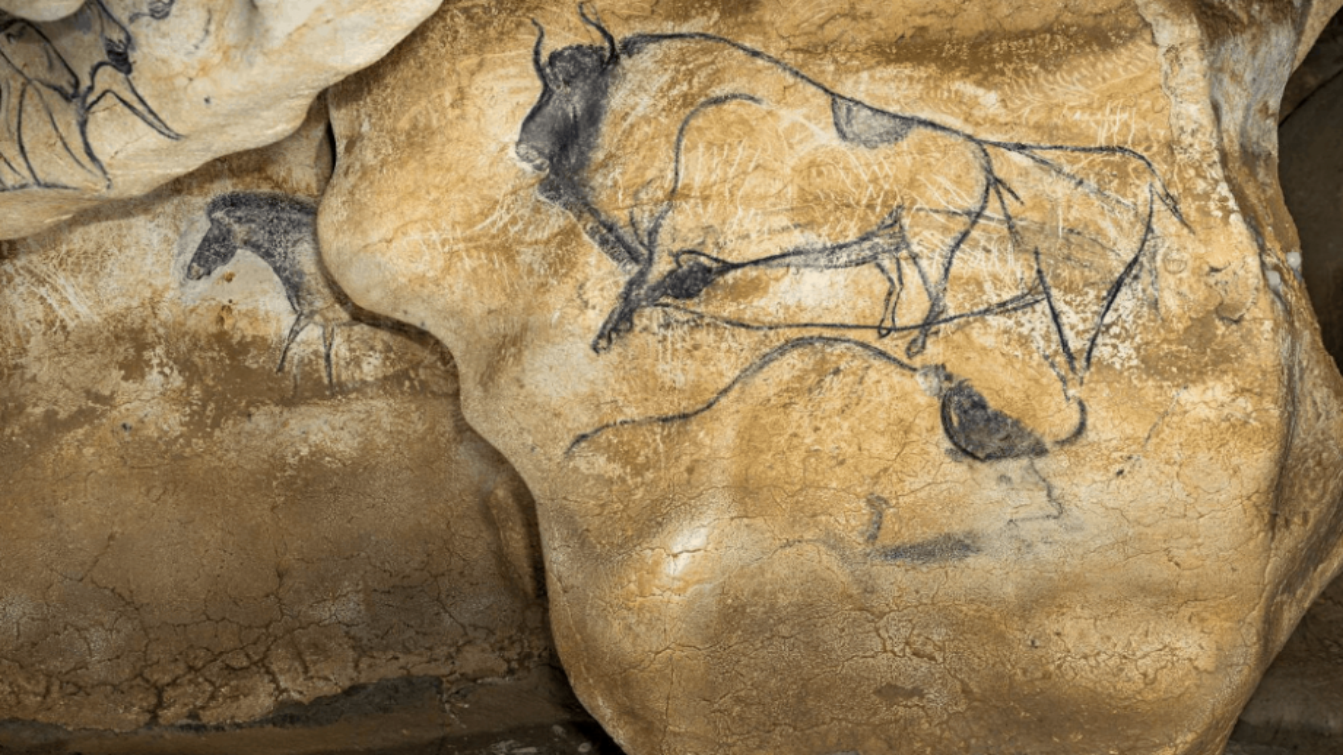 Les grands sites archéologiques se dévoilent en ligne