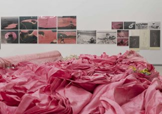 """Celebrating Thirty-Five Years of Pink:  Christo & Jeanne-Claude's """"Surrounded Islands"""""""