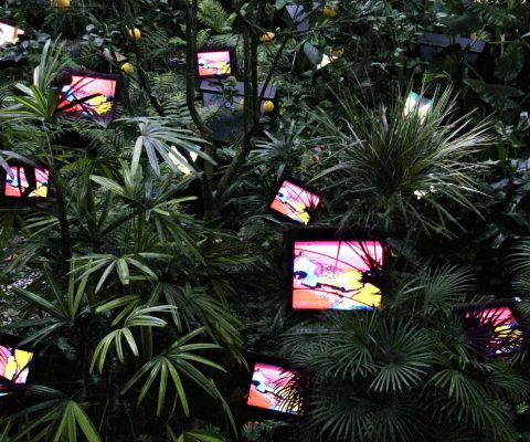 Nam June Paik at Tate Modern: How the 'Father of Video Art' came to be