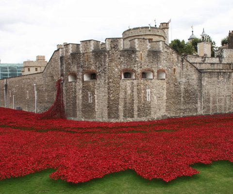 WWI 100 years on: two ways in which the 1918 Armistice was be remembered this year