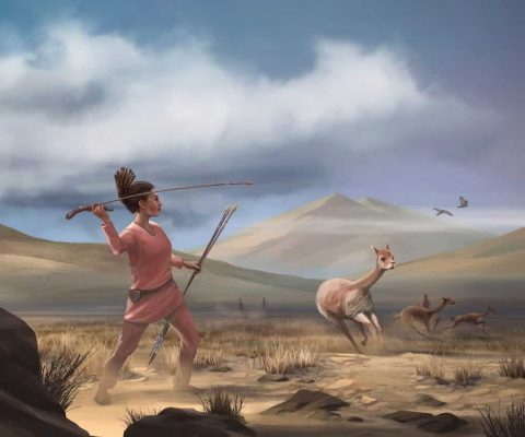 Research into 9,000-year-old Wilamaya Patjxa burial site suggests women were big-game hunters, bucking long-held notions of gender roles