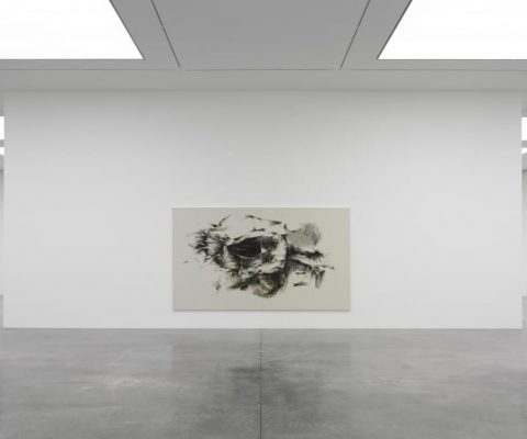 Christine Ay Tjoe's debut solo show at White Cube