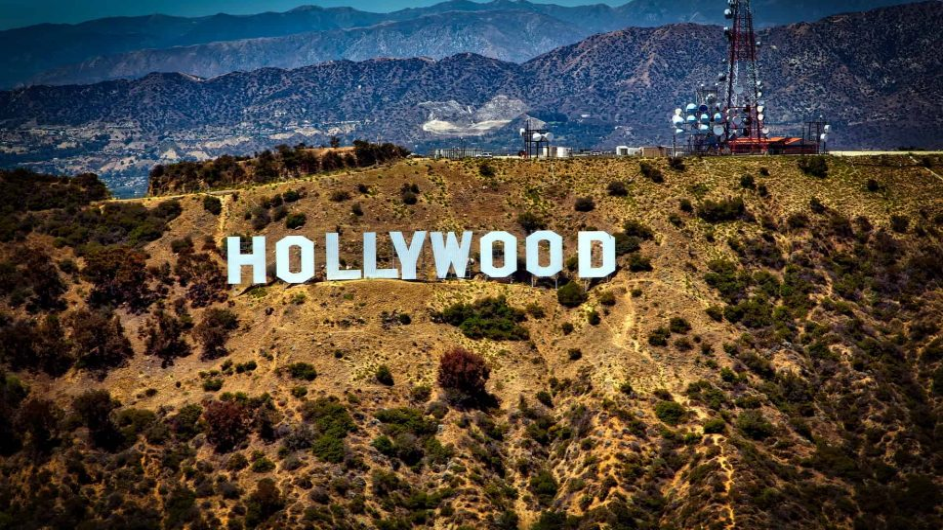 Le cinéma hollywoodien aux enchères