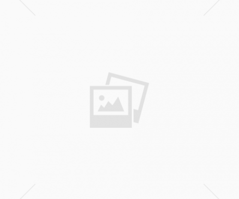 Blockbuster King Tut show breaks French attendance record