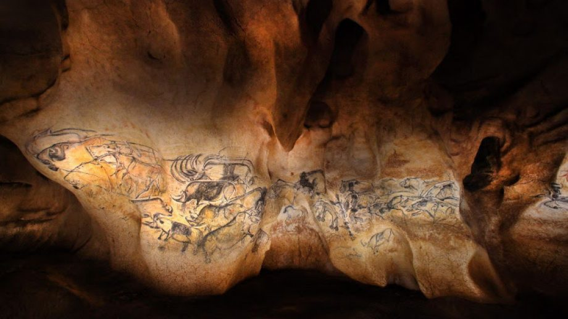 Enorme succès pour la Grotte Chauvet 2